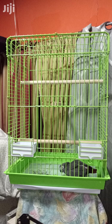 Max Medium Bird Cage