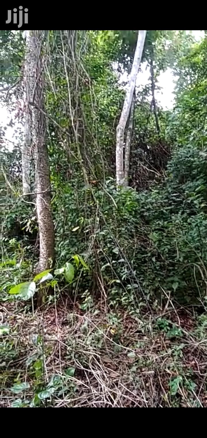 100 Acres of Land for Sale at Koforidua