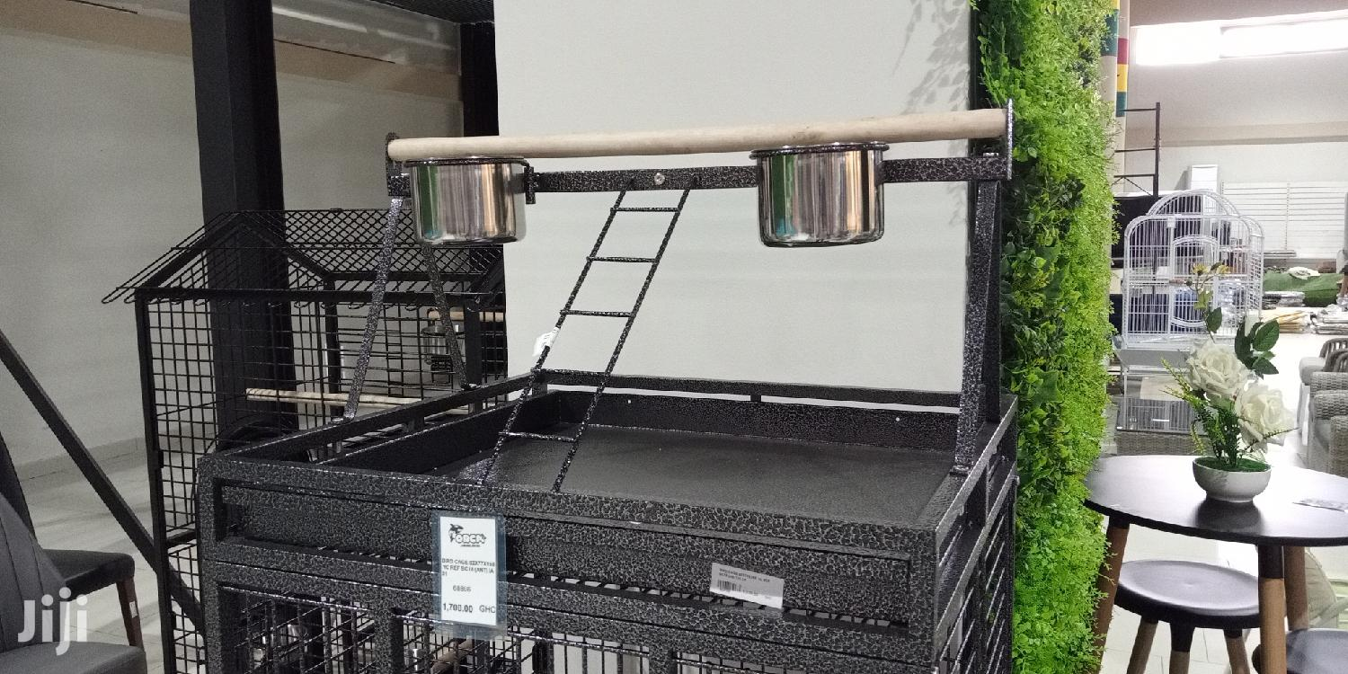 Max Bird Cage With Perch