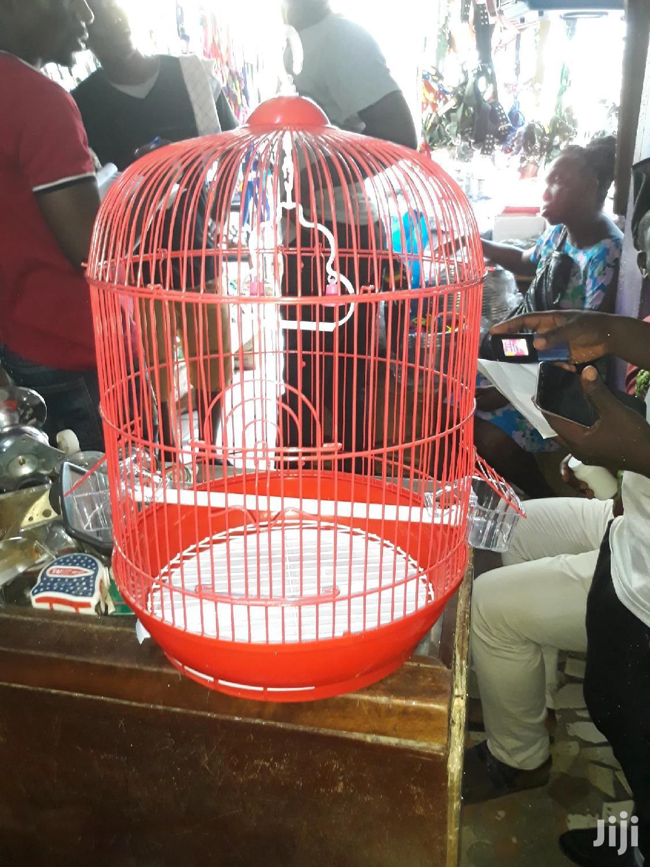 Metal Bird Cage