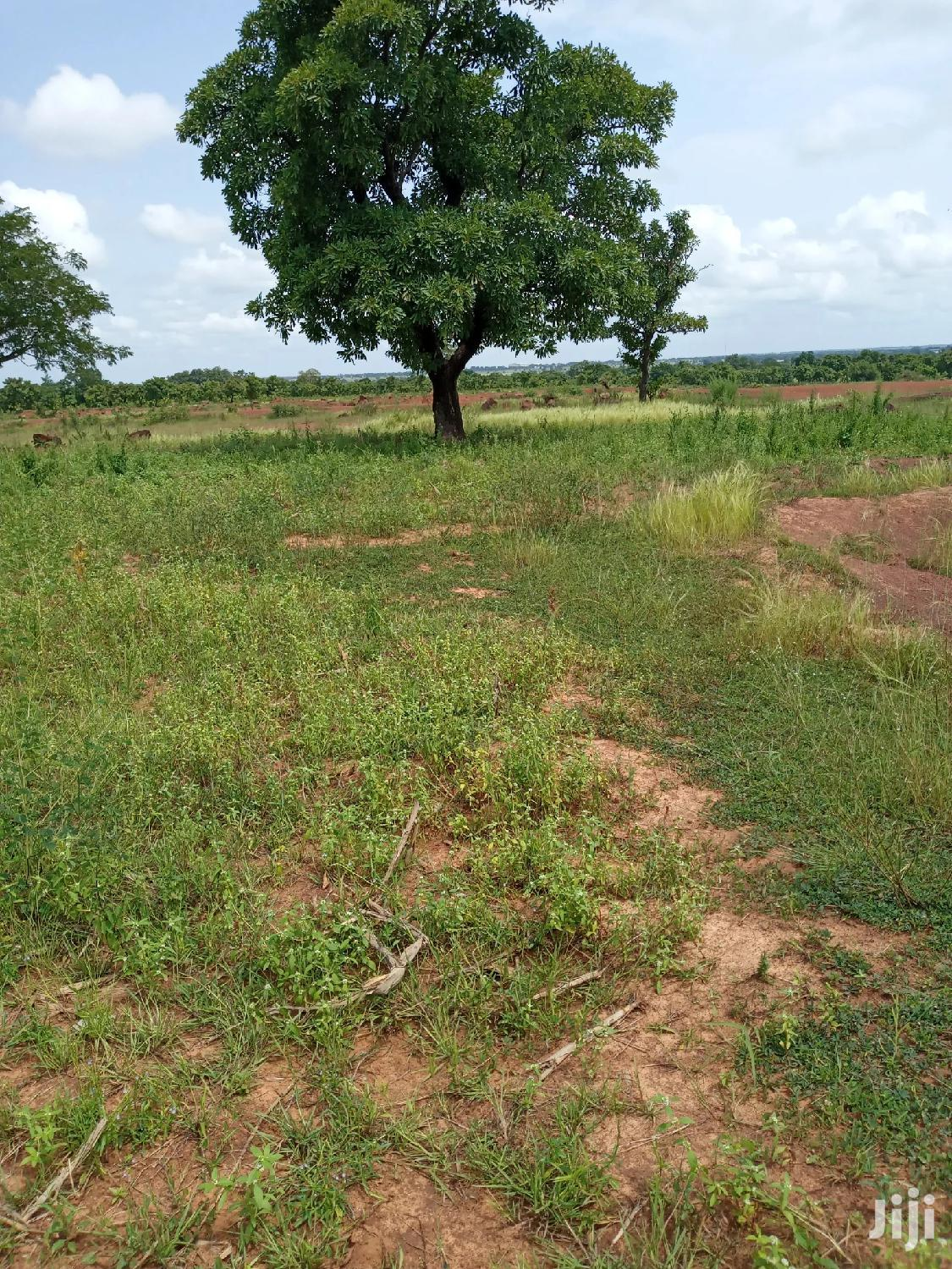 A Plot Of Land At Yongduni For Sale At A Cool Price | Land & Plots For Sale for sale in Tamale Municipal, Northern Region, Ghana