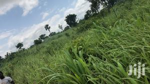 Farmlands For Sale   Land & Plots For Sale for sale in Brong Ahafo, Kintampo South