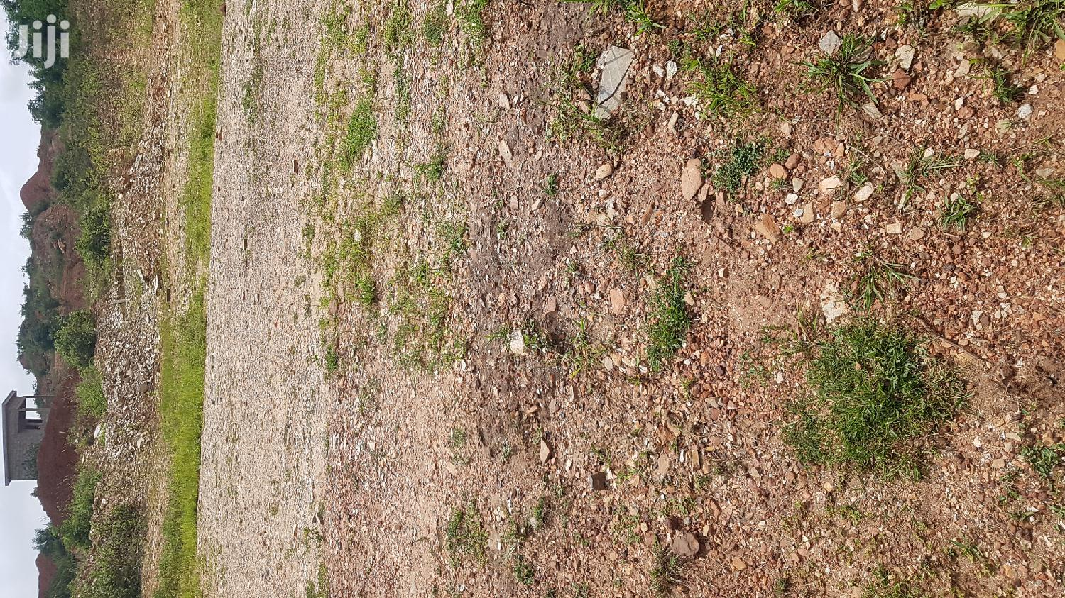 One Plot of Land for Sale