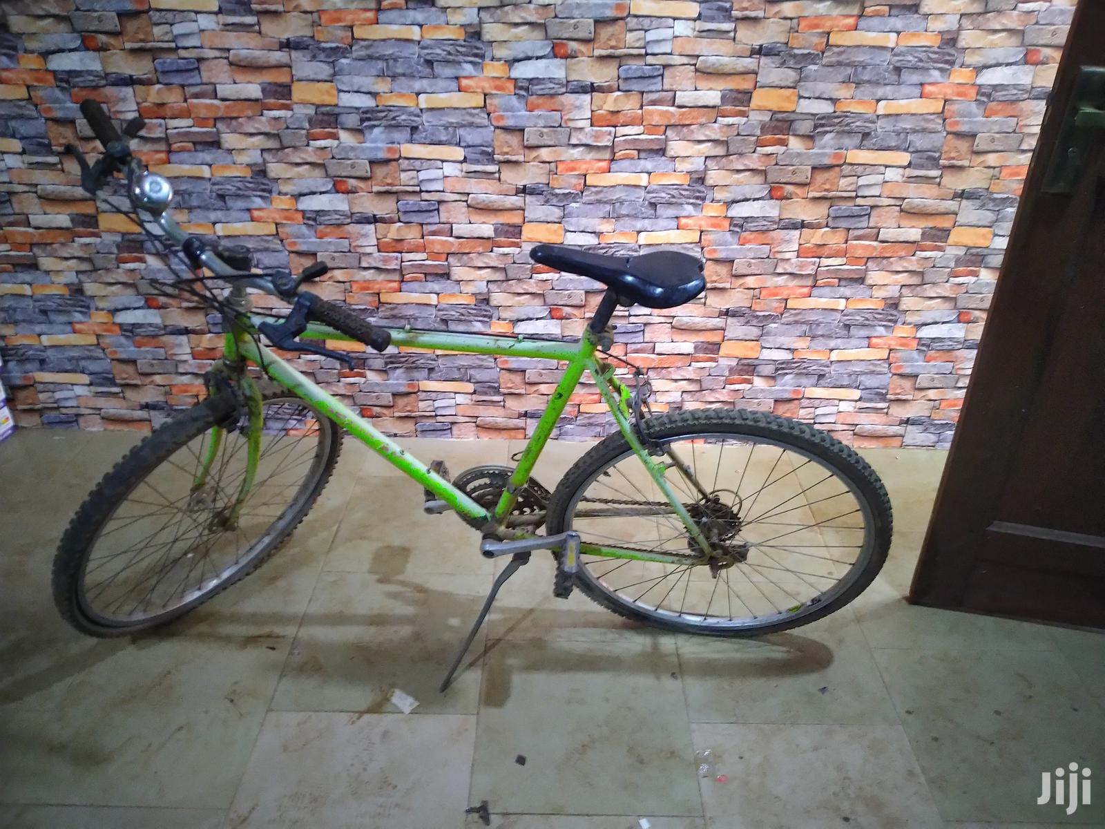 Archive: Mountain Bike for Sale