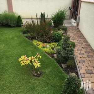 Landscaping Expert Services | Landscaping & Gardening Services for sale in Kaneshie, North Kaneshie